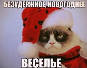 Безудержное новогоднее веселье